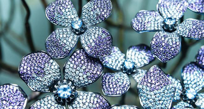 Matthew Campbell Laurenza: Flowers