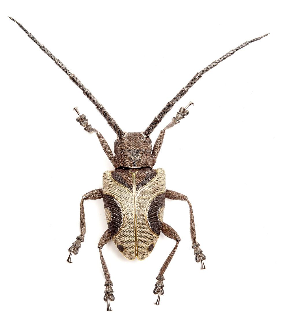 Matthew Campbell Laurenza: Long-Horn Beetle