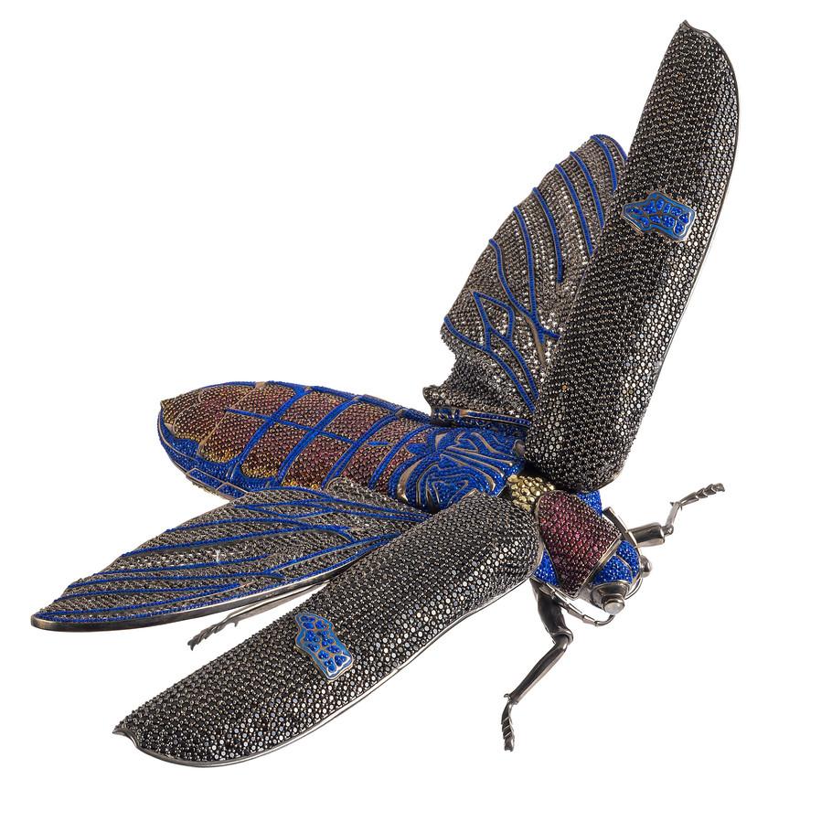 Matthew Campbell Laurenza: Flying Bug