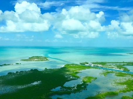 You Better Belize It