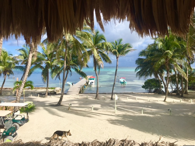 View from the Apartment at Caye Casa