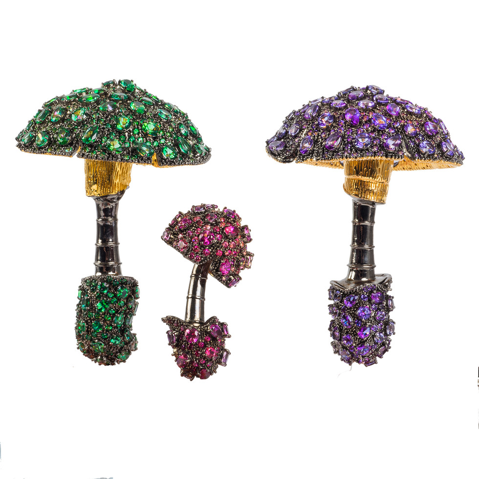 Matthew Campbell Laurenza: Mushrooms