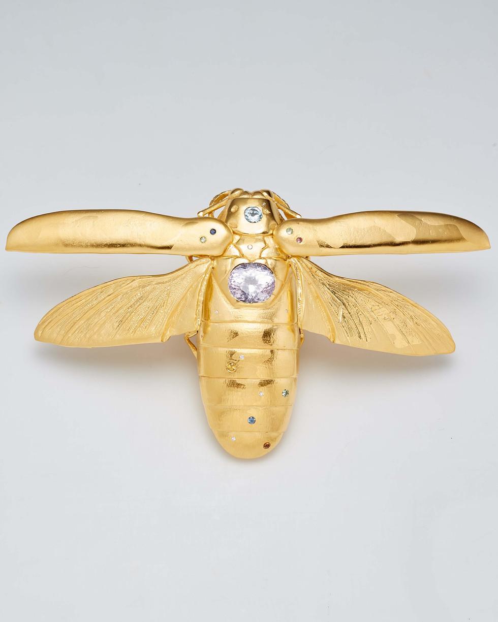 Matthew Campbell Laurenza: Jeweled Moth