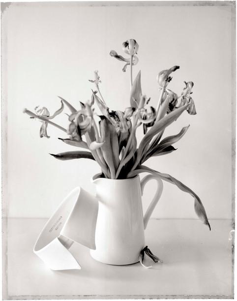 Collar & Vase - Polaroid Neg