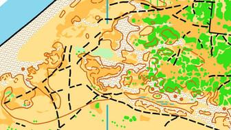 Vesterlyng - Pinseløb