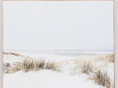 Sand Reed Dunes Canvas Print