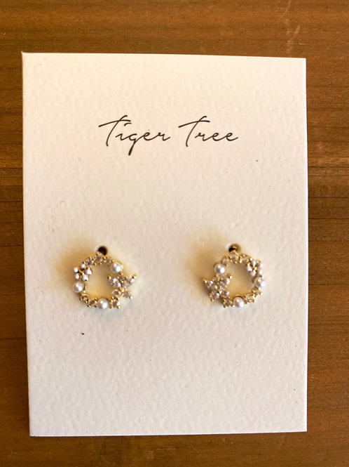 Ring of Crystals Earrings