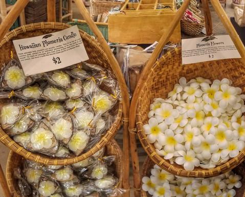 Plumeria Candle on Coconut & Foam Plumeria Flowers