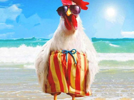 Hen's went on Christmas break