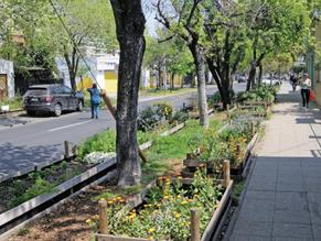 Infraestructura verde como agricultura urbana: enfrentar una crisis alimentaria pos pandemia