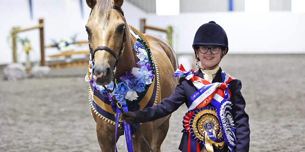 Inhand, Ridden & Working Hunter Show - Double Points Special