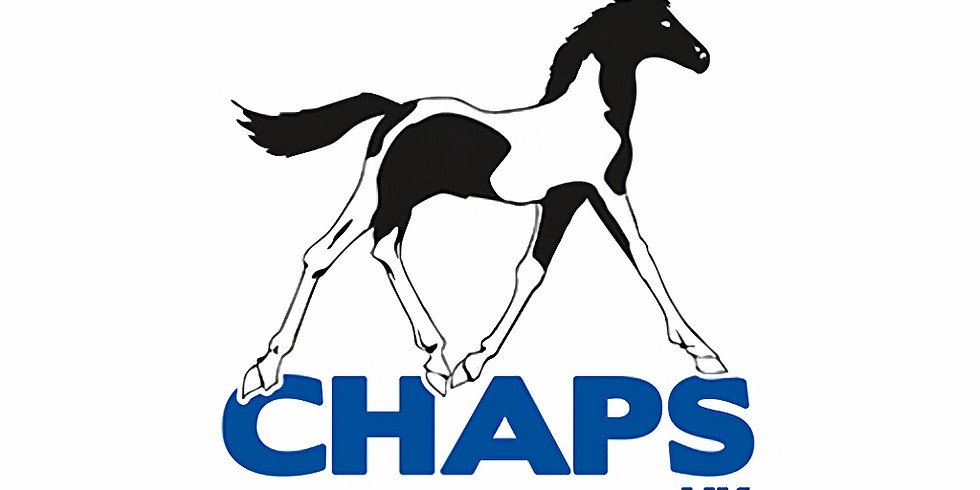 CHAPS (UK) Judges Assessment Day