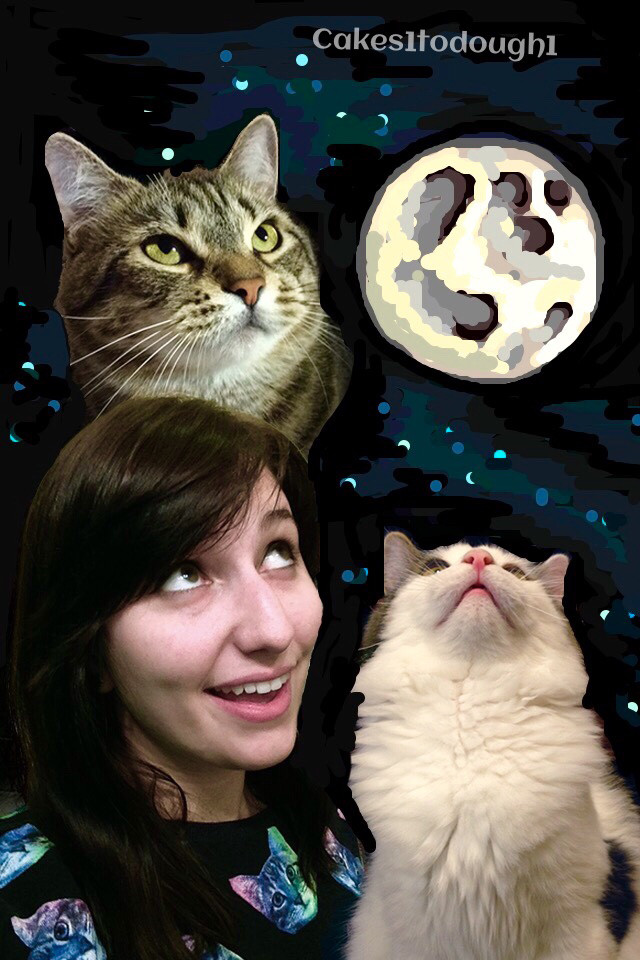 13 - Cats  Snapchat  SnapCat.jpg
