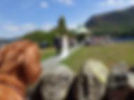Lake District, Weddings, Keswick, Cockermouth, Wedding dogs, dogs at weddings, wedding dog sitter, wedding dog walker,