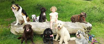 Isabelle Le Voi, dog walker, keswick, cockermouth, laeland dog walker,