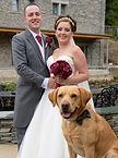 Lake District, Weddings, Keswick, Cockermouth, Wedding dogs, dogs at weddings, wedding dog sitter, wedding dog walker, Inn on the lake