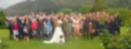 wedding dogs, dogs at wedding, wedding dog sitter,lake district, keswick, cockermouth, dog walker, wedding day goals, inn on the lake
