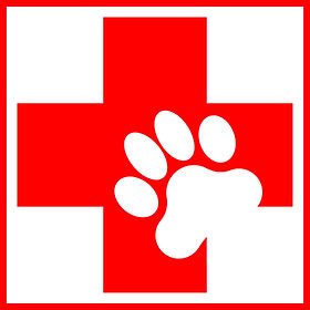 Canine First Aid Trained