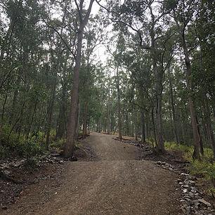Mt Cootha Trail