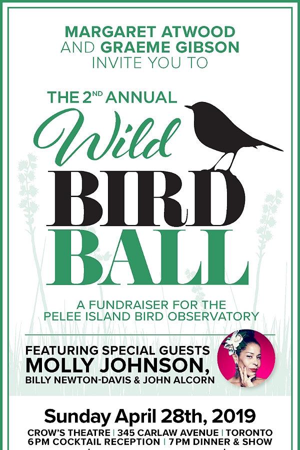 wild-bird_invite.jpg