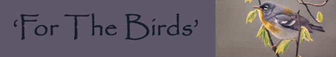 for-the-birds2.jpg