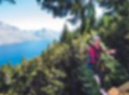 ziptrekKereru_edited.png