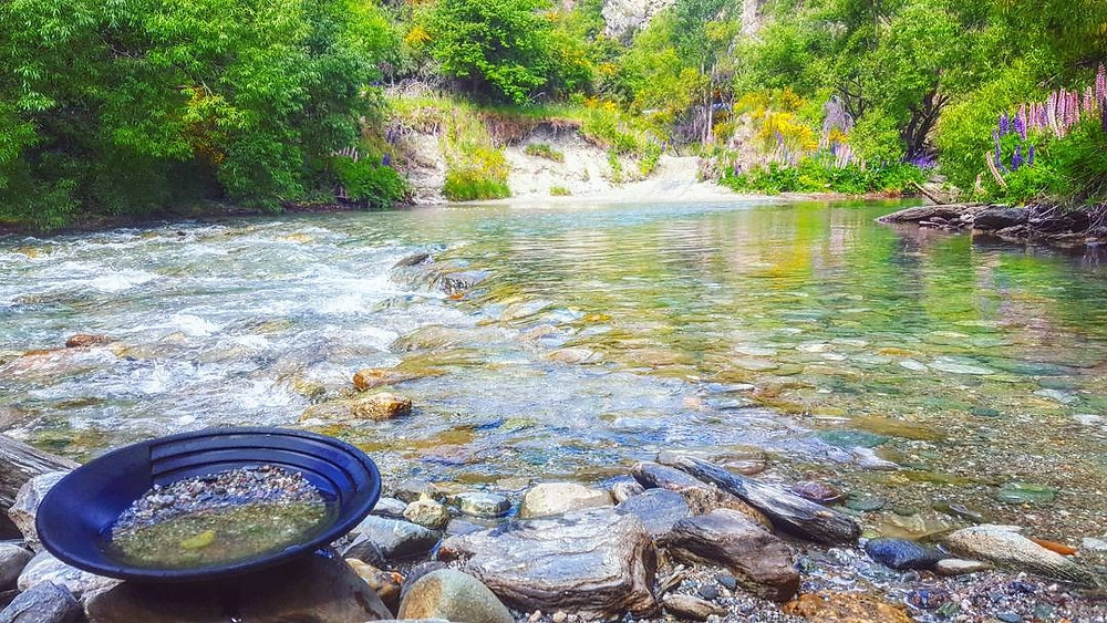 Gold panning in Arrowtown, NZ
