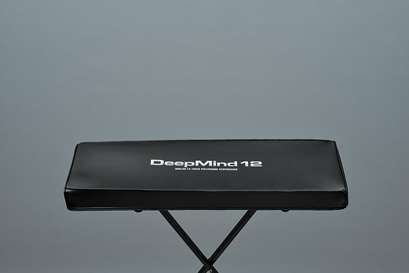 Behringer Deepmind-12