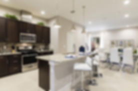 Countertops: granite, quartzite; quartz; Vessel Sinks, Undermount Sinks; Faucets; Cabinets