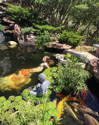 fashion installation art, recycled materials, art residency, sustainable art, koi pond, Colorado