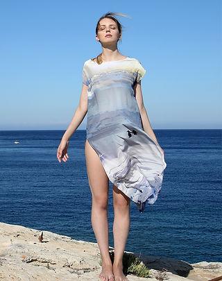 Two penguins, wearable art, silk dress