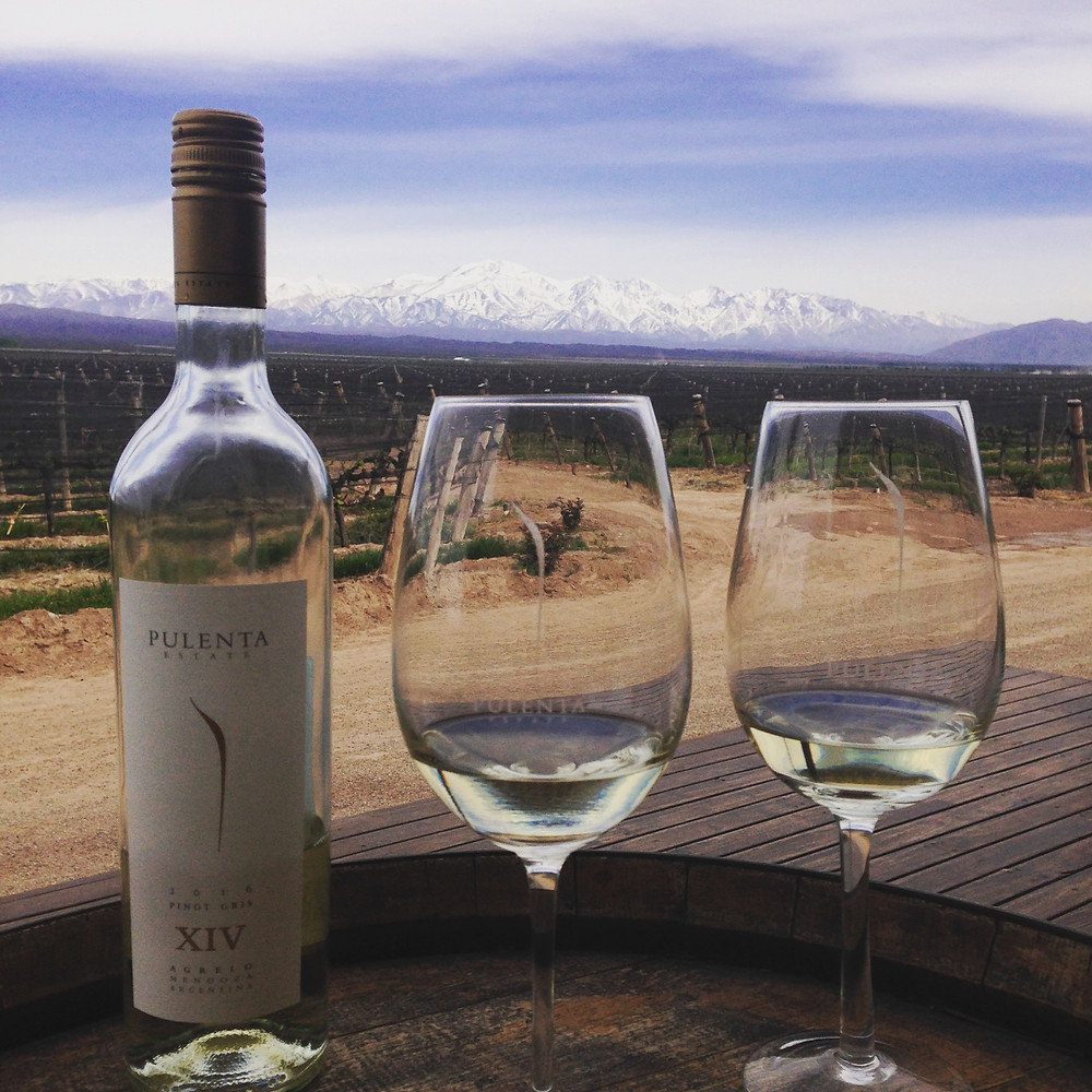 Wine Tasting by the Andes Mountains