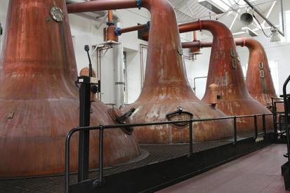 What is: Fermentation VS Distillation