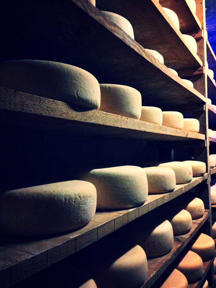 Pé Descaous, an Ossau-Iraty Cheesemaker in the Béarn.