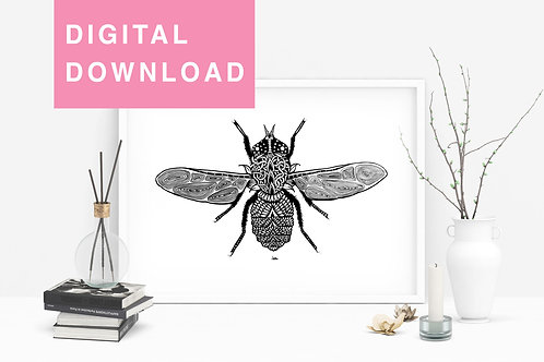Fly Original Detailed Drawing For instant Download