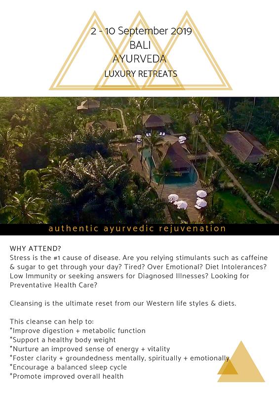 2019 Bali Retreat 5.png