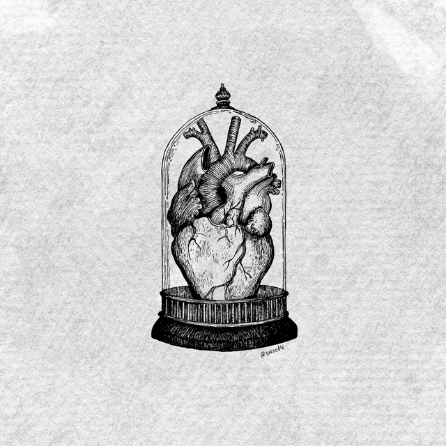 heart grey illustration.png