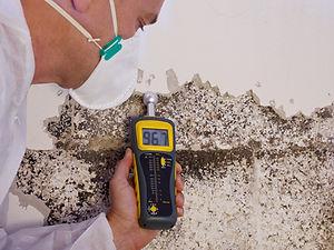 a professional pest control contractor o