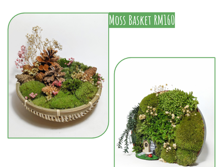 13 September 20: Preserved Moss Basket & Tray Workshop