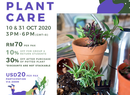 10 or 31 October 20: Basics Of Indoor Plant Care