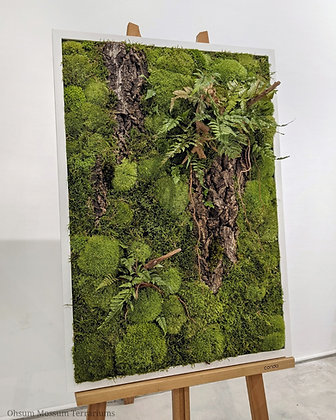 Preserved Moss Frame A1 Size