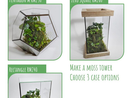 12 or 19 July 20: Moss Tower Workshop