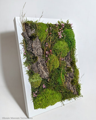 Preserved Moss Frame A4 Size
