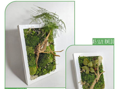20 September 20: Preserved Moss Frame Workshop