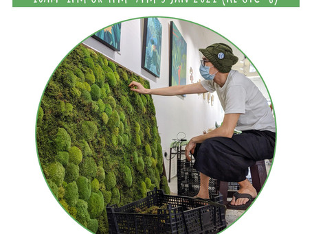 3 January 21: Professional Moss Preserving & Crafting