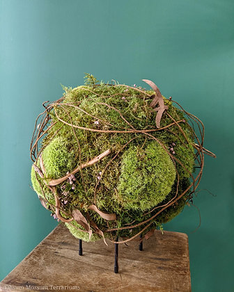 Preserved Moss Sphere