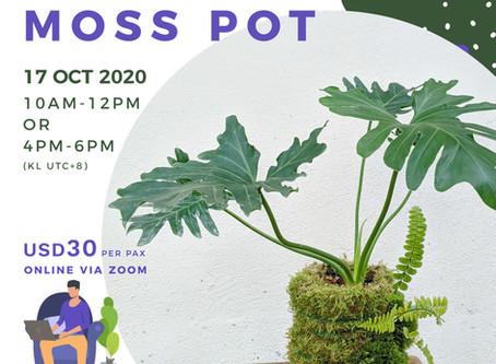 17 October 20: How To Make A Moss Pot