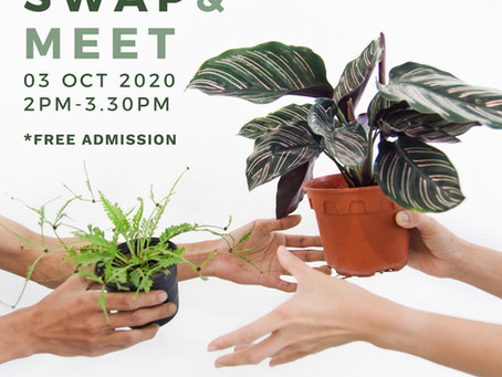 3 October 20: Plant Swap & Meet