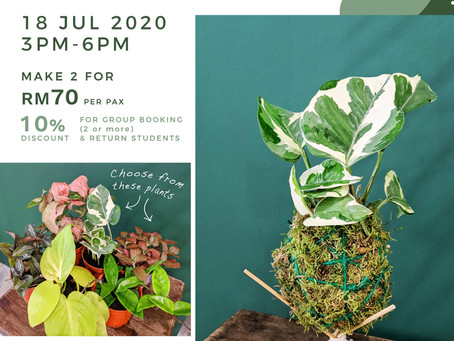 18 July 20: Kokedama Workshop