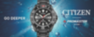 Citizen Promaster Diver.png